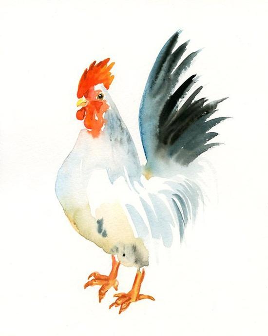 Chicken art! (By dimdi on Etsy)