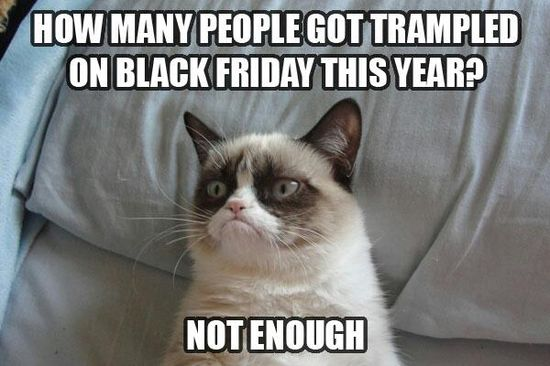 I love Grumpy Cat so much