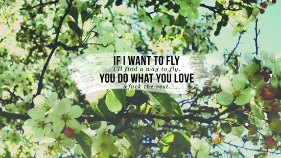 if i want to fly ... desktop wallpaper