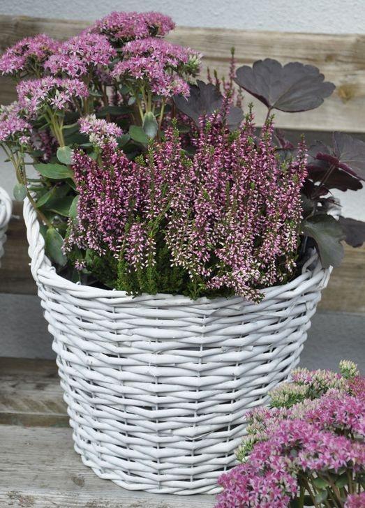 Flower arrangements for autumn