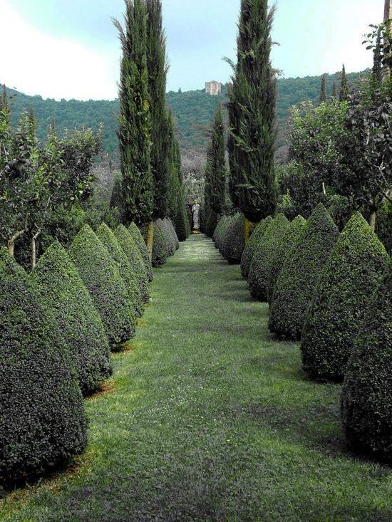 Ciao Bella!, speciesbarocus: Villa Cetinale.  By ingorrr.