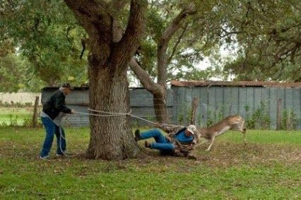 Funny story about roping a deer.