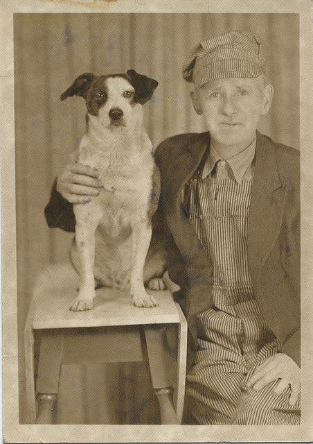 .Vintage dogs