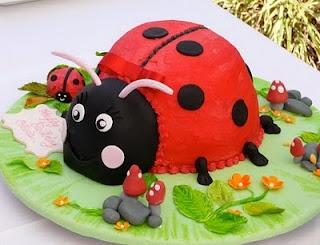 Ladybug Cake ?
