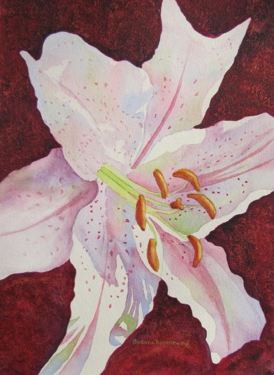 "#Original #Watercolor #Painting #StarGazer #Lily #Flower #Art #Home #Decor #Gift.  This ""Star Gazer Lily"" has softly colorful shadows on its red spotted, white petals. I loved painting the gold and red background that helps make this elegant painting a real knock-out! © 2011 by Barbara Rosenzweig, $250 Etsy. www.etsy.com/..."