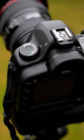 How to set up a digital SLR camera to take good pictures.