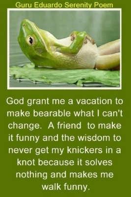 My sentiments exactly and Good Grief it would have a frog in the picture.