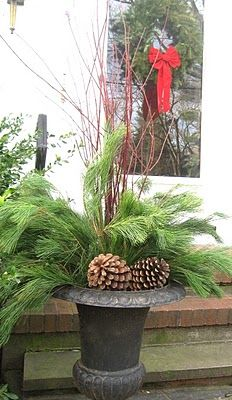 Outside Christmas Decor    MUST plant a row of Red Twig Dogwoods this year!!