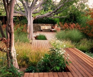 moden landscape design.  Love the structure of the trees, and long lines of walkway.