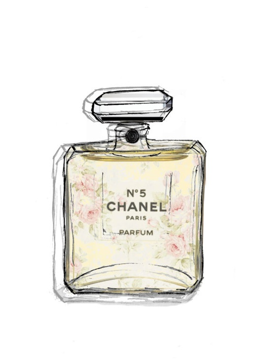 Chanel Perfume Bottle Illustrations  Foral drawings  by Floralchic,