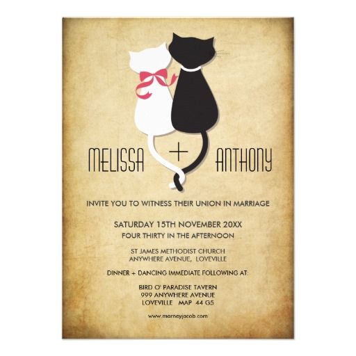 Vintage Funny Cats Couple Wedding Invitation.  $1.95