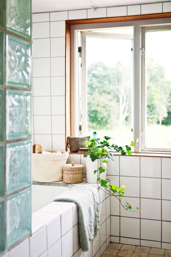 plants in the bathroom