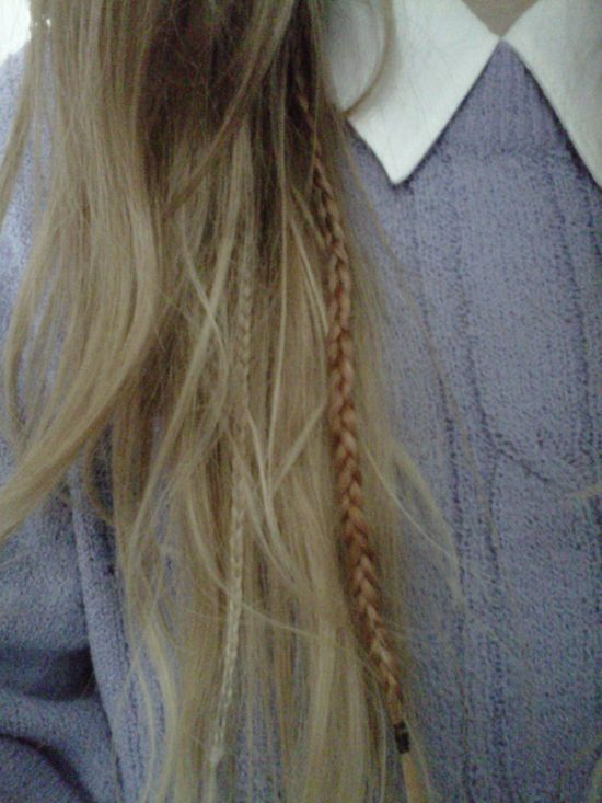 sneaky little plaits