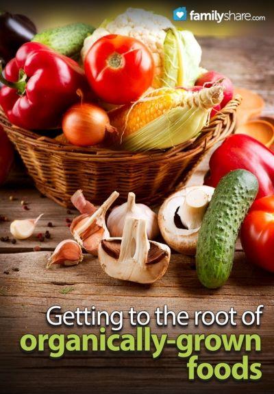Great info on organic foods!