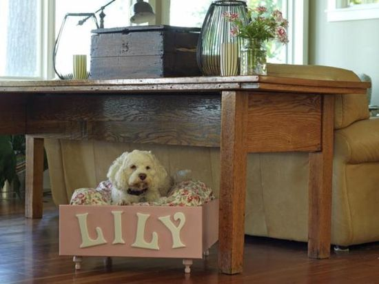 Pet Bed Out of an Old Drawer