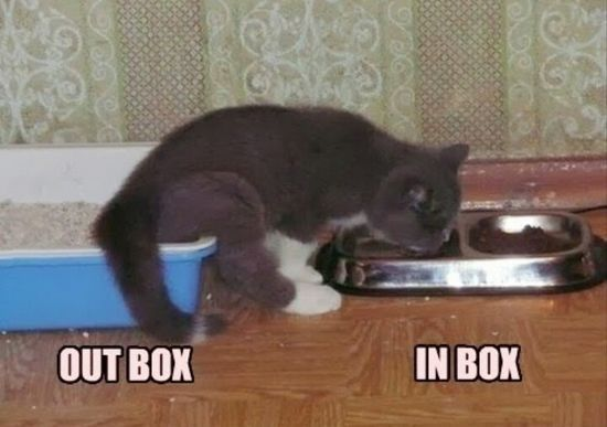 Out box/in #avatar funny photos #funny #funny shit #amazing photos