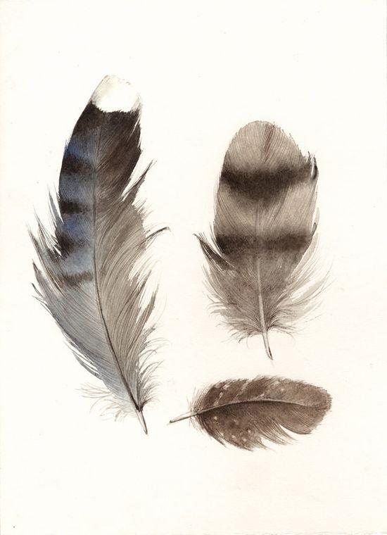 Affordable art print of Amber Alexander's original watercolor painting. #erindollar