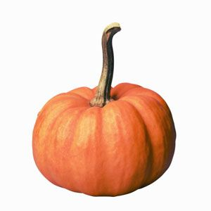 Pumpkin Buying and Cooking Guide
