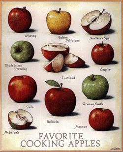 Best cooking apples