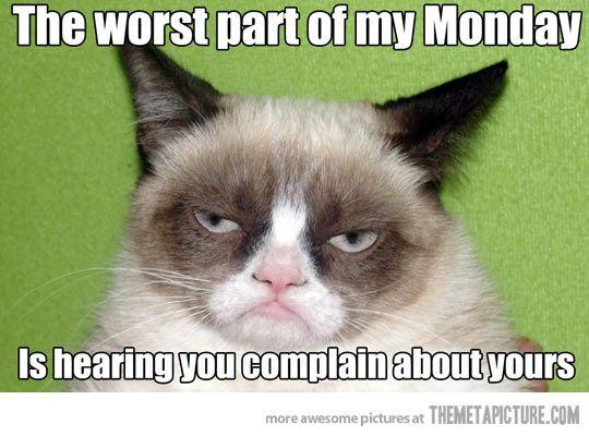 Grumpy Cat on Mondays…