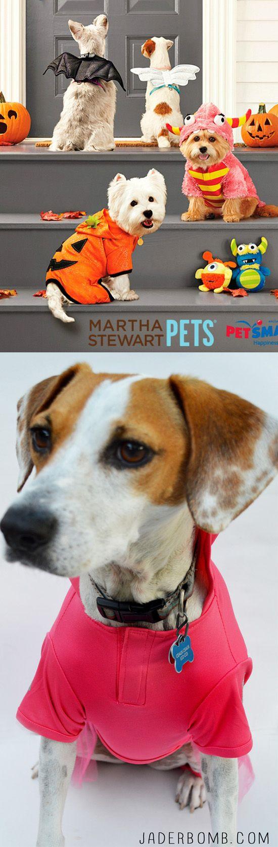 Martha Stewart Pets Halloween Costume Contest WWW.JADERBOMB.COM