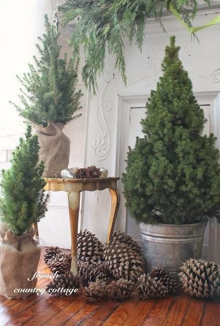 Add a touch of holiday in a hurry with potted trees, a few buckets, and burlap.