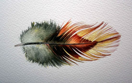 original watercolor feather