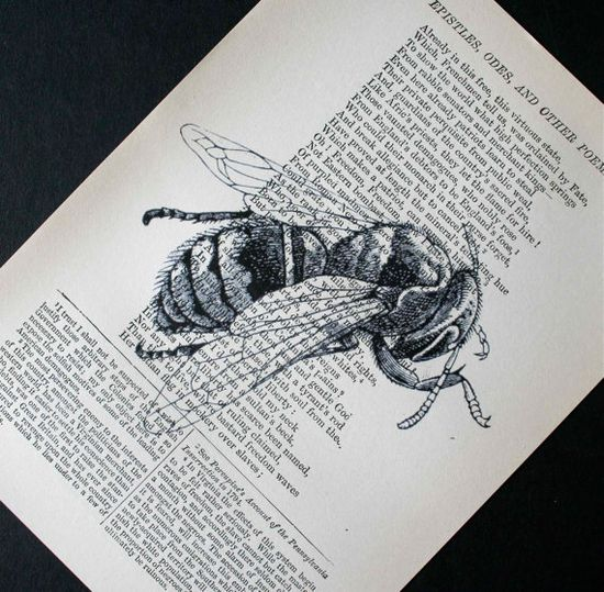 Buzzing into spring : Honeybee print on vintage salvaged book page, by CrowBiz