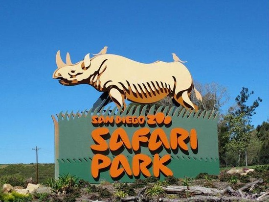 San Diego Safari Park, Escondido, California This was an awesome park to visit!