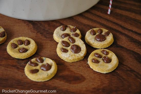 Dog Treats for the Pet Lover : Gifts from the Kitchen