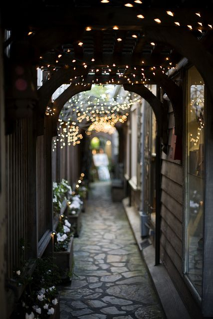 archway with fairy lights