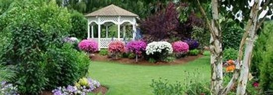 TN Garden Decor Now