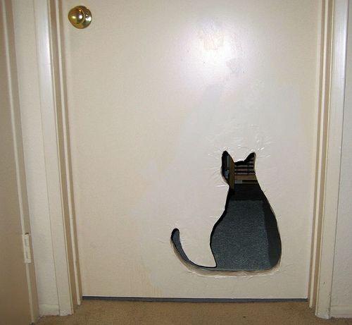 Ok so it's not a cat bed, but how cool is this cat door!
