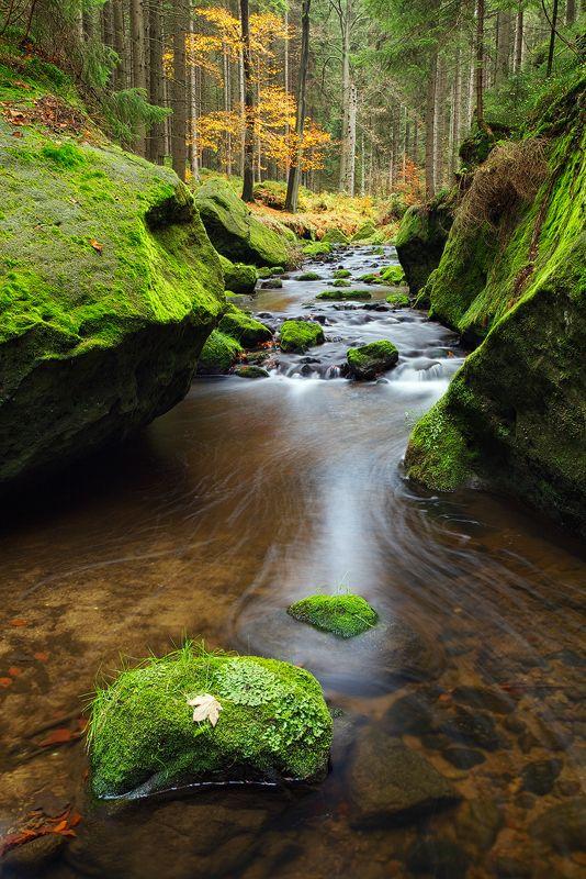Between the Rocks by Martin Rak, via 500px; Czech Republic