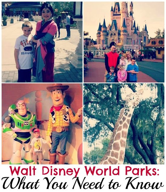 Walt Disney World Parks: What You Need to Know