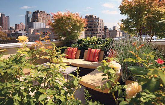 30 Rooftop Garden Design Ideas Adding Freshness to Your Urban Home
