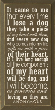 To all my dogs with love