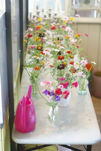 flower harvest by wood & wool stool, via Flickr