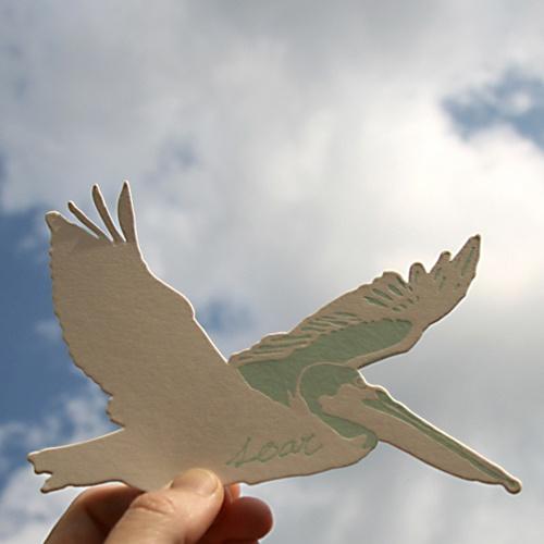 blackbird letterpress