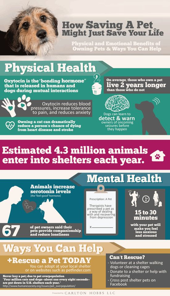 #INFOGRAPHIC: HOW SAVING A PET MIGHT JUST SAVE YOUR LIFE    Having a pet not only fills your heart with unconditional love, but there are other mental and physical benefits to being a pet owner. A longer life, less anxiety and stress are just a few of the benefits of saving a pet. Even therapists have prescribed a pet as a way of dealing with depression.