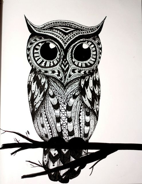 owl tattoo - Ashley