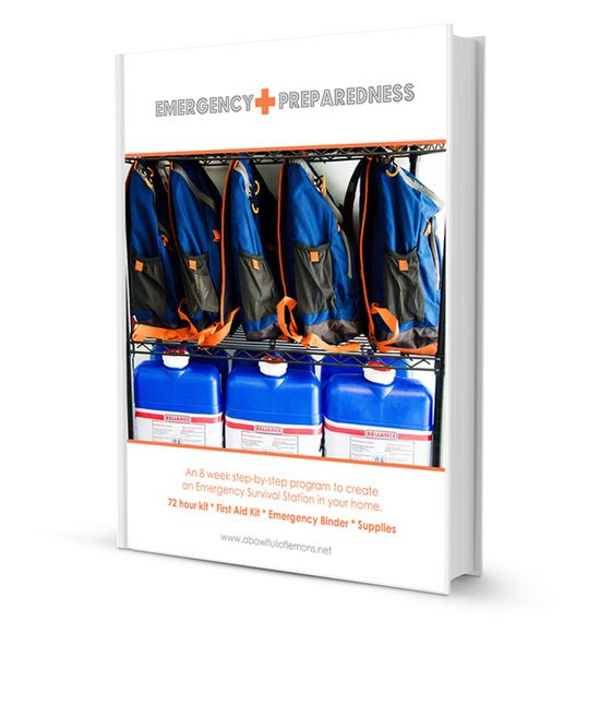 Emergency Preparedness E-Book with customizable binder printables.  Get your family prepared for unexpected emergencies (hurricanes, power outages, earth quakes, etc).  Includes 72 hour kit, first aid kit checklists.   - A Bowl Full of Lemons
