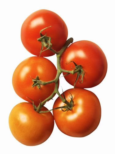 True or false: for #tomatoes, the bigger, the better. False! Just another fruit and veggie myth. #health #fruit #vegetable #myths