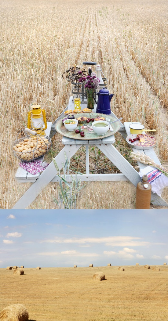 i want to have a picnic in a field!