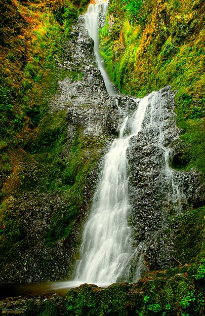 Coopey Falls, Columbia River Gorge, Oregon