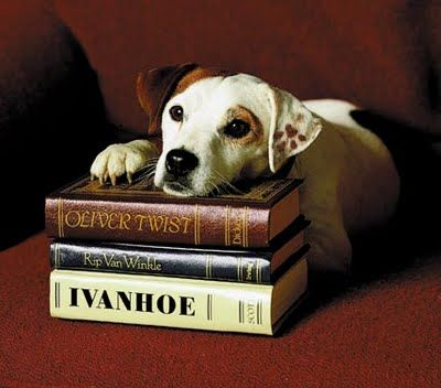 What's the story, Wishbone? Is it worth a look? it kinda seems familiar like a story from a book!  Thanks Wishbone for turning me into an avid reader! Such great childhood memories!