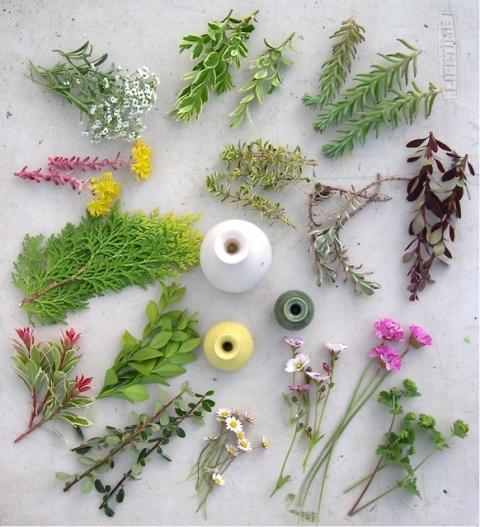 Miniature flower arranging!