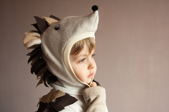 Fairy Tale Hedgehog Hat, Halloween Outfit.
