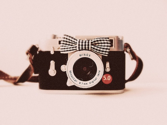 a vintage camera and little black and white bow is completely bliss.