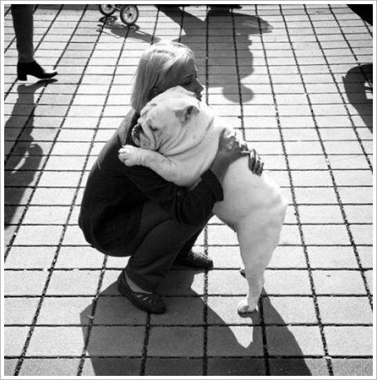 bulldog hug!